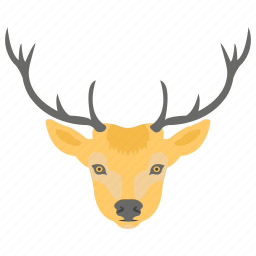 bucks, deer, fauna, wild animal, wildlife icon