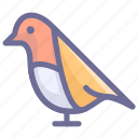 animal, bird, pets icon