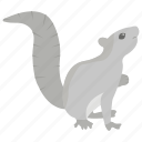 arboreal rodent, gopher, hackee, spermophile, squirrel icon