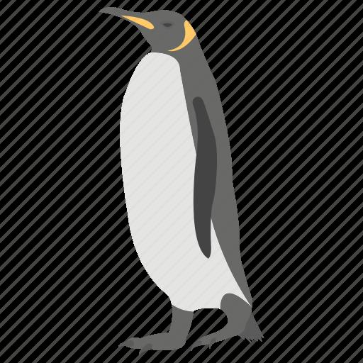 beak animal, flightless bird, penguin, pet, rockhopper icon