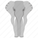 boar, elephant, mammal, mammoth, mastodon, tusker icon