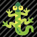 animal, lizard, pet, reptile