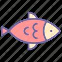 seafood, fish, fishing