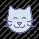 pet, cat, animal