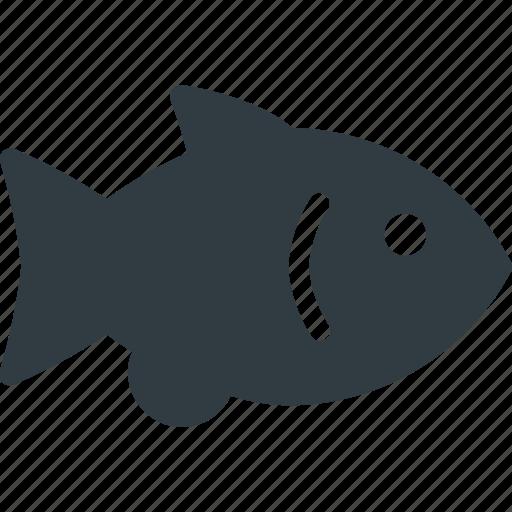 animal, fish, gold, pet, pets icon