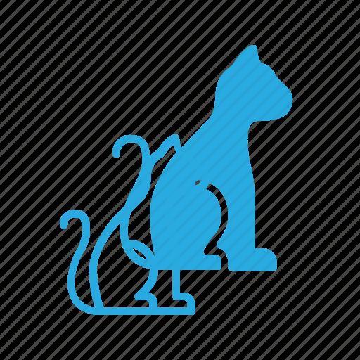 animal, cat, company, pet, pets icon