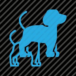animal, company, dog, pet, pets icon