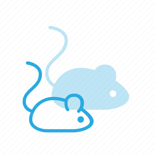 animal, mouse, pet, pets icon