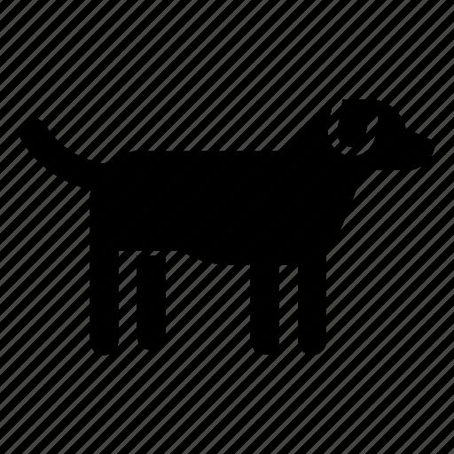 animal, dog, domestic pet, pet icon