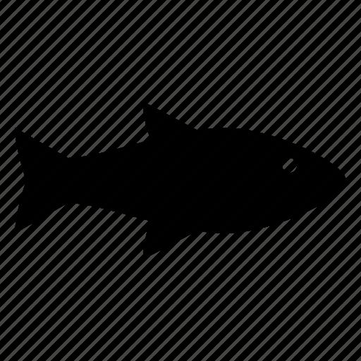 fish, fishing, ocean, sea, sea life, water icon