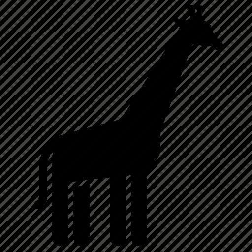 giraffe, nature, wild, wildlife, zoo icon