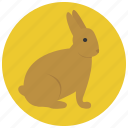 animal, bunny, hare, pet, pets, rabbit icon