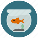 aquarium, fish, fish tank, goldfish, pet, pets icon
