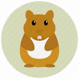 animal, hamster, pet, pets, rodent icon