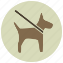 animal, dog, dog walk, leash, on leash, pets, walk icon