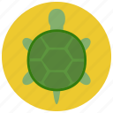 animal, pet, pets, turtle icon