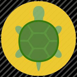 animal, pet, pets, turtle icon