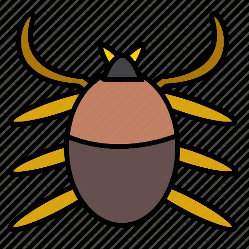 animal, arachnid, bug, entomology, insect, pet, spider icon