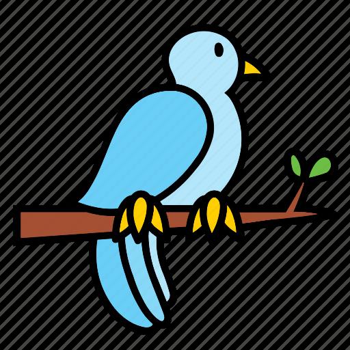 animal, bird, blue, peace, pet, pigeon icon
