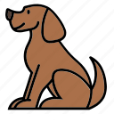 animal, animalkingdom, color, dog, mammal, pet, puppy icon