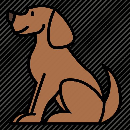 animal, animalkingdom, color, dog, mammal, pet, puppy icon