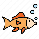 animal, fish, fishes, meat, orange, pet, pets icon