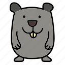 animal, color, hamster, mammal, pet, rodent icon