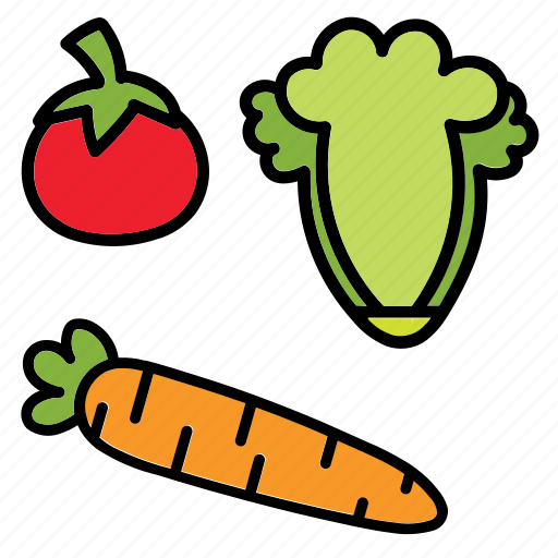 cabbage, carrot, color, food, tometo, veggie icon