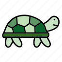animal, color, pet, reptile, turtle, wildlife, zoo icon