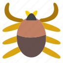 animal, arachnid, bug, entomology, insect, pet, spider icon