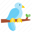 animal, bird, peace, pet, pigeon icon