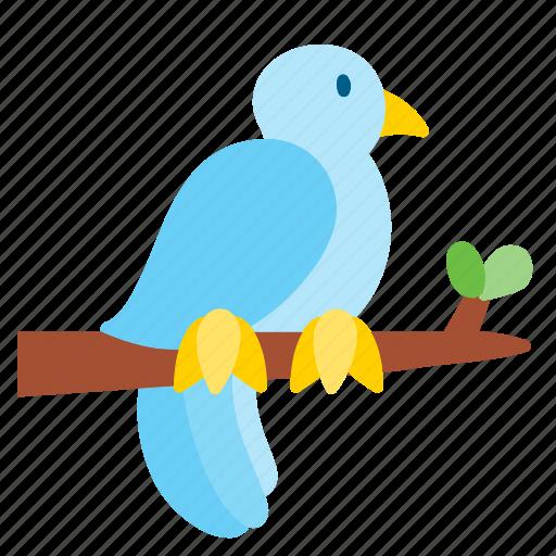 animal, bird, peace, pet, pigeon icon