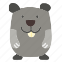 animal, hamster, mammal, pet, rodent icon
