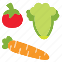 cabbage, carrot, food, tometo, veggie icon
