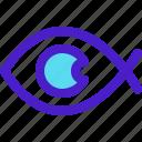 editor, eye, fish, photo