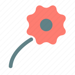 flower, photo, picture icon