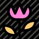 effect, flower, nature, potrait, view icon