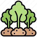 forest, jungle, nature, tree, wood icon