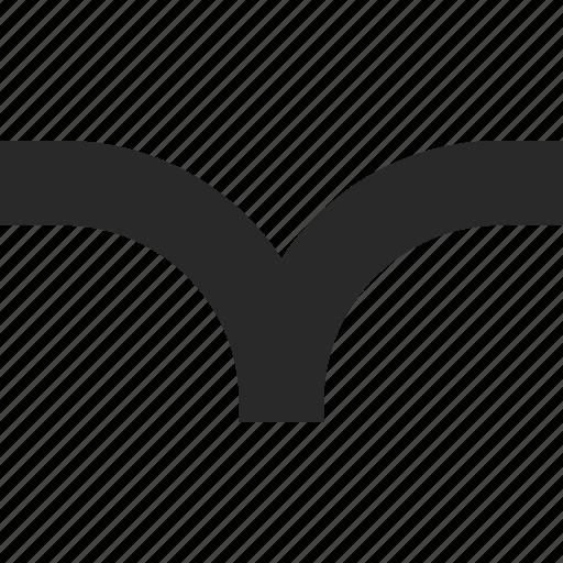 bird, fly, freedom, sea, seagull icon