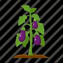 eggplant, farm, fruit, harvest, plant, vegetable, vegetable garden icon