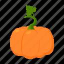 farm, fruit, harvest, plant, pumpkin, vegetable, vegetable garden icon