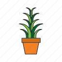 flora, houseplant, nature, plant, pot, snake, spider icon