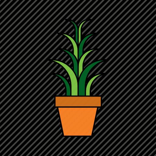 flora, houseplant, nature, plant, pot, snake, spider icon