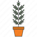 decor, flora, home, houseplant, nature, plant, pot icon