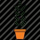 decor, flora, home, houseplant, nature, plant, pot icon