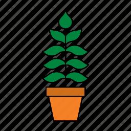decoration, flora, home, houseplant, nature, plant, pot icon