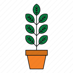 decor, decoration, flora, houseplant, nature, plant, pot icon