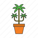 decor, flora, home, houseplant, nature, palm tree, plant icon