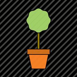 decoration, flora, houseplant, nature, plant, pot, tree icon