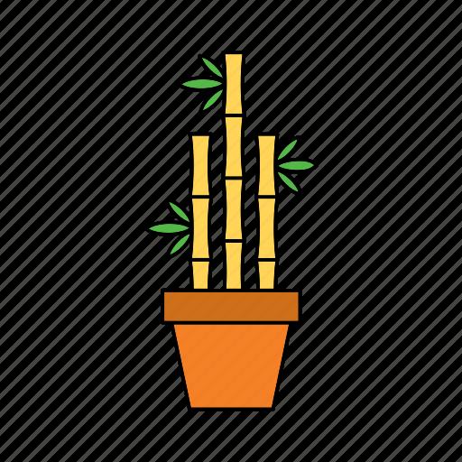 bamboo, decor, flora, home, nature, plant, pot icon